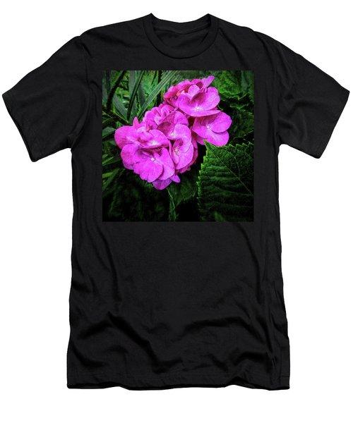 Painted Hydrangea Men's T-Shirt (Athletic Fit)
