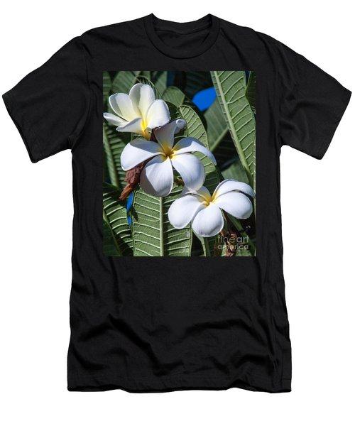 Plumeria Men's T-Shirt (Slim Fit) by Roselynne Broussard