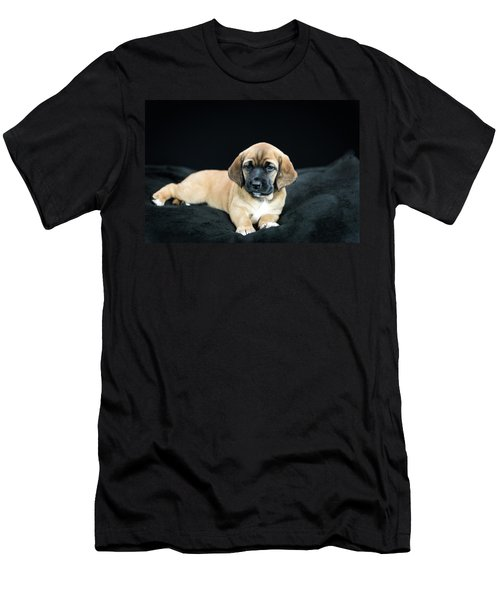 Puppy Love Men's T-Shirt (Athletic Fit)