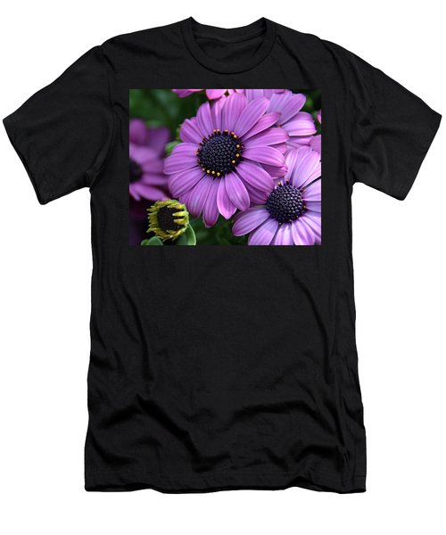 African Daisy Men's T-Shirt (Slim Fit) by Ronda Ryan