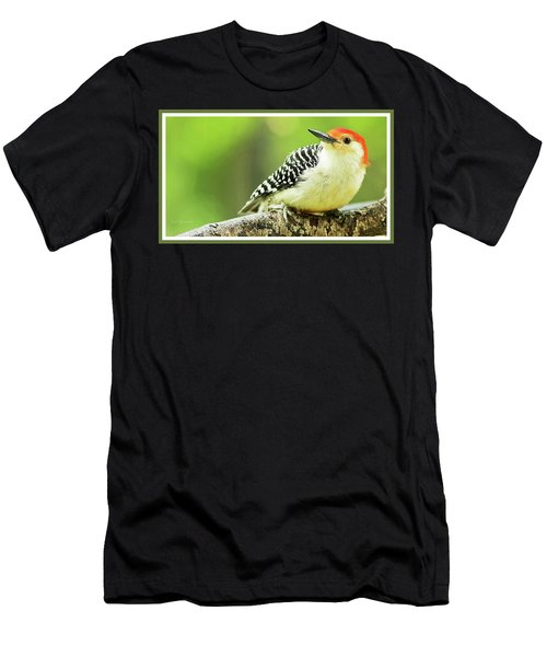 Red Bellied Woodpecker, Male, Animal Portrait Men's T-Shirt (Athletic Fit)