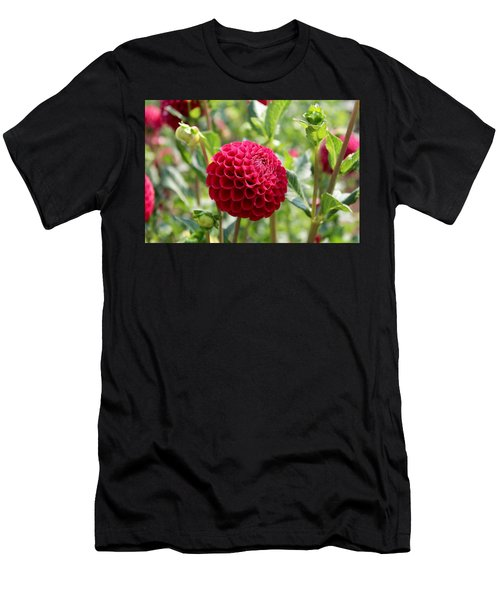 Red  Dahlia Men's T-Shirt (Athletic Fit)