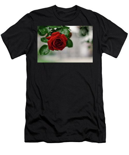 Roses In The City Park Men's T-Shirt (Athletic Fit)