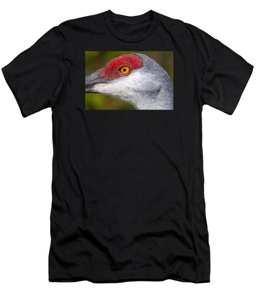 Sand Hill Crane Men's T-Shirt (Athletic Fit)
