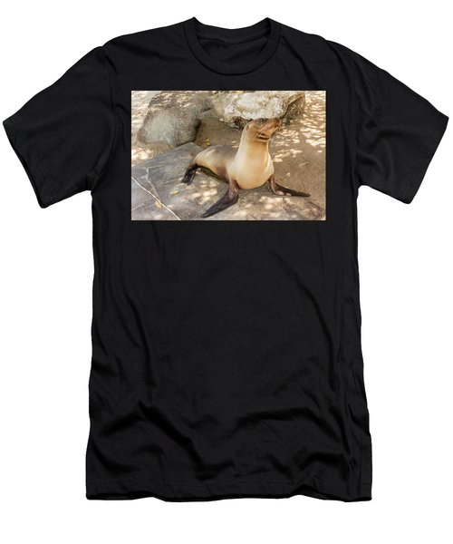 Sea Lion On The Beach, Galapagos Islands Men's T-Shirt (Athletic Fit)