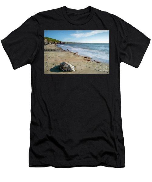 Seascape Wales Men's T-Shirt (Athletic Fit)