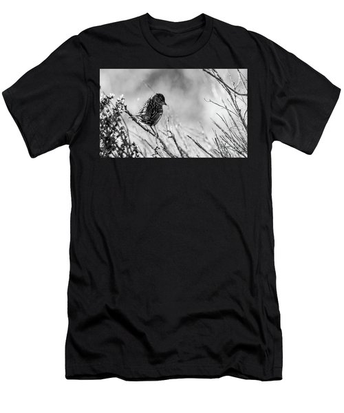 Snarky Sparrow, Black And White Men's T-Shirt (Athletic Fit)