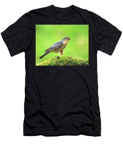 Sparrowhawk Men's T-Shirt (Athletic Fit)