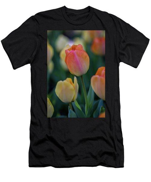 Spring Tulip Men's T-Shirt (Athletic Fit)