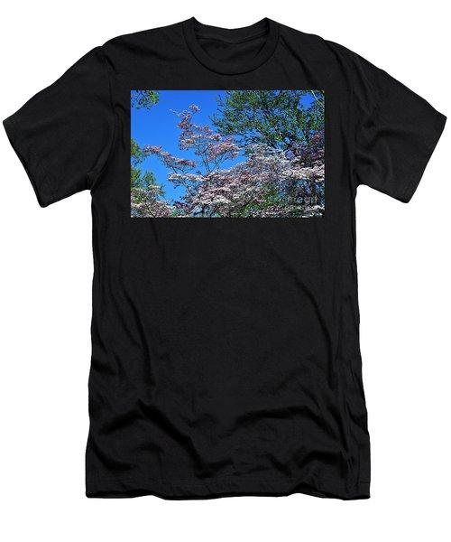 Springtime In Louisville Men's T-Shirt (Athletic Fit)