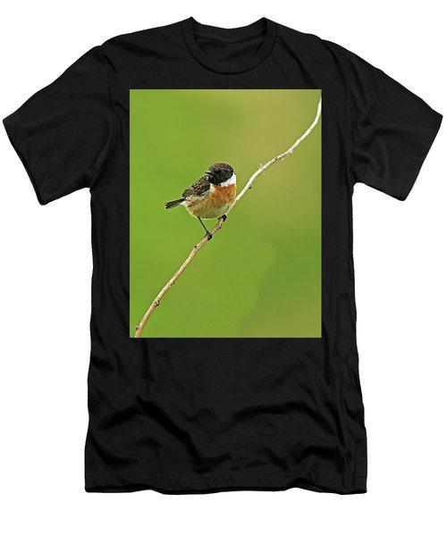 Stonechat Men's T-Shirt (Athletic Fit)