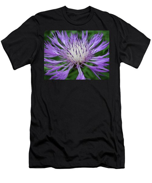 Summer Blooms Men's T-Shirt (Athletic Fit)