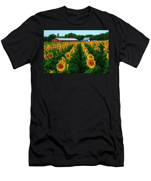 Sunflower Field #4 Men's T-Shirt (Athletic Fit)