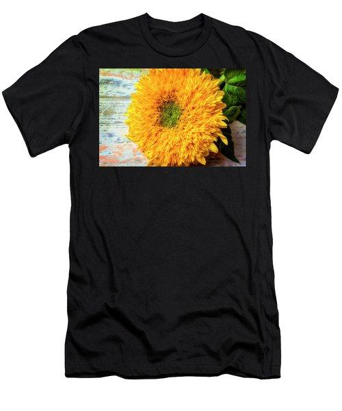 Sunflower Study Men's T-Shirt (Athletic Fit)