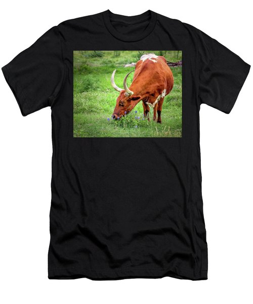 Texas Longhorn Grazing Men's T-Shirt (Athletic Fit)