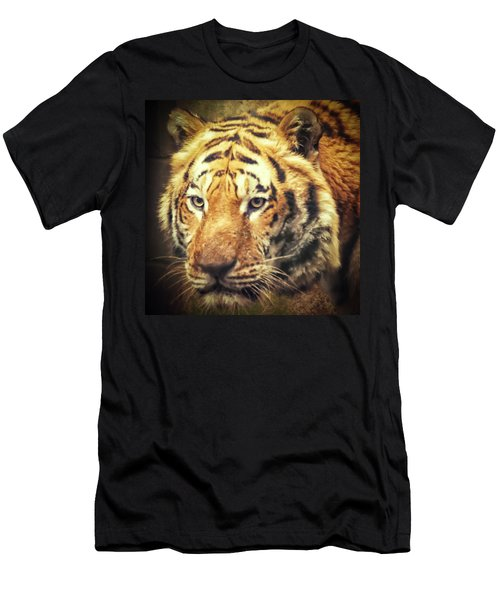 Tiger Portrait Men's T-Shirt (Athletic Fit)