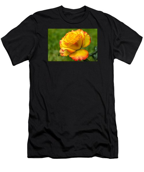 Two Toned Rose  Men's T-Shirt (Athletic Fit)