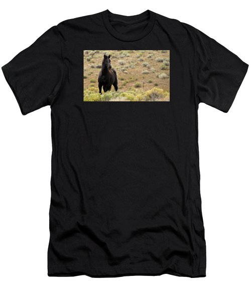 Wild Black Mustang Stallion Men's T-Shirt (Athletic Fit)
