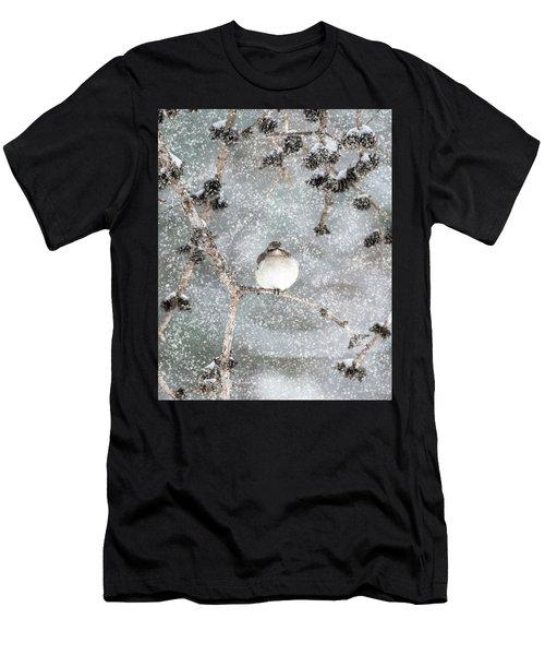 Winter Mockingbird Men's T-Shirt (Athletic Fit)