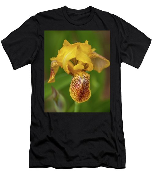 Men's T-Shirt (Athletic Fit) featuring the photograph Yellow Bearded Iris by Brenda Jacobs