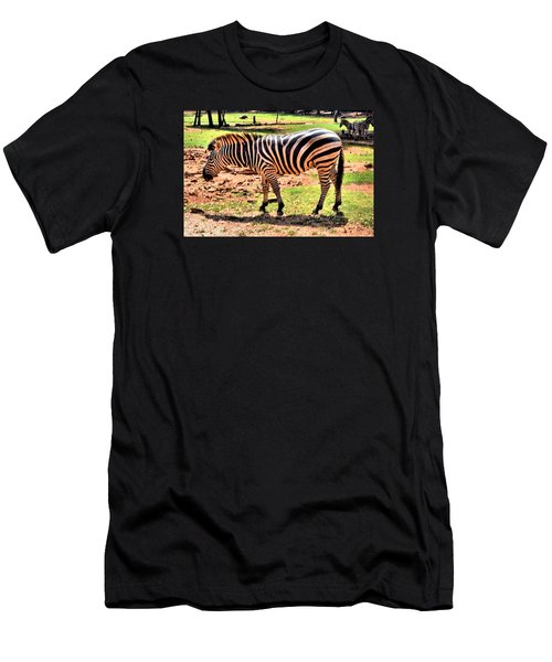 Zebra Men's T-Shirt (Slim Fit) by James Potts