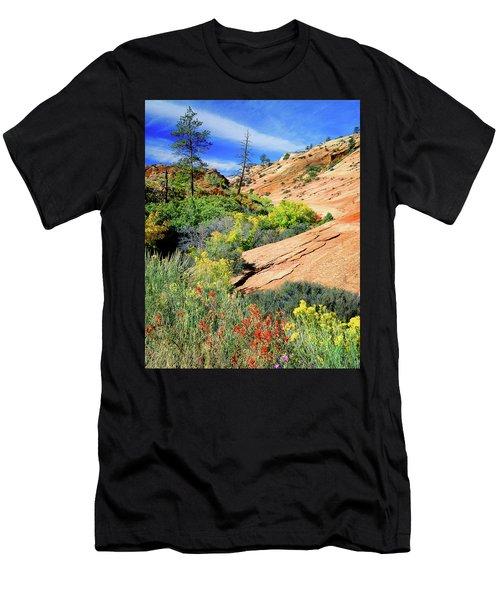Zion Slickrock Men's T-Shirt (Athletic Fit)