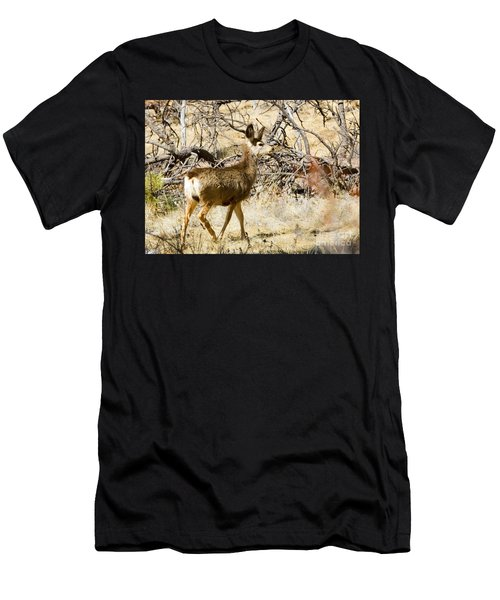 Mule Deer In The Pike National Forest Men's T-Shirt (Athletic Fit)