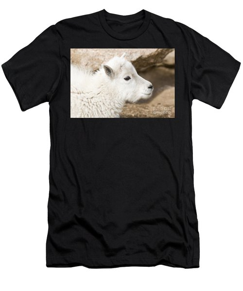 Baby Mountain Goats On Mount Evans Men's T-Shirt (Athletic Fit)