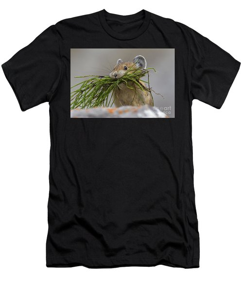 Pika With A Mouthful  Men's T-Shirt (Athletic Fit)