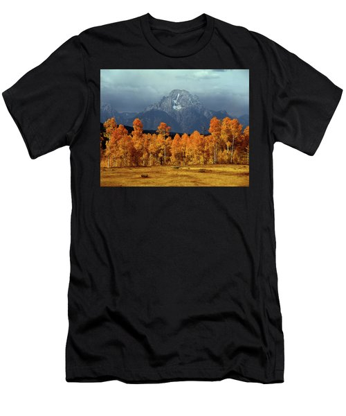 1m9235 Mt. Moran In Autumn Men's T-Shirt (Athletic Fit)