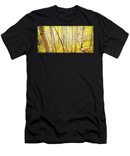Aspen Grove II Men's T-Shirt (Athletic Fit)