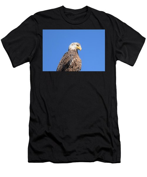 Men's T-Shirt (Athletic Fit) featuring the photograph Bald Eagle Juvenile Perched by Margarethe Binkley