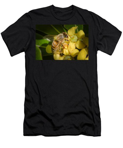 Bees Gathering From Pittosporum Flowers Men's T-Shirt (Athletic Fit)