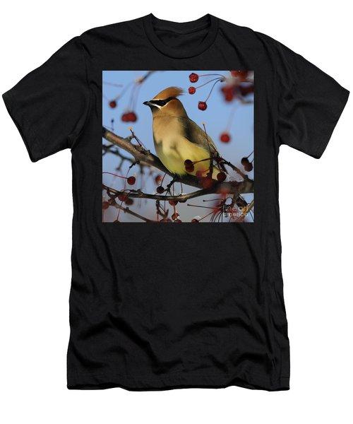 Cedar Waxwing... Men's T-Shirt (Athletic Fit)