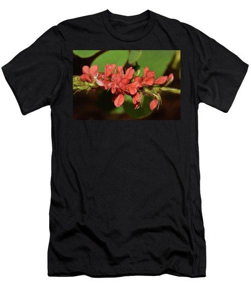 Creeping Indigo - Indigofera Spicata Men's T-Shirt (Athletic Fit)