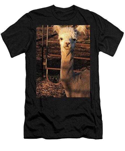 Cria Men's T-Shirt (Athletic Fit)