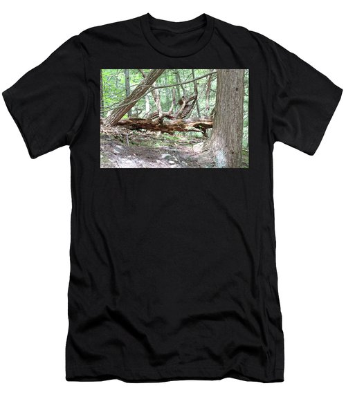 Fallen Tree Men's T-Shirt (Athletic Fit)