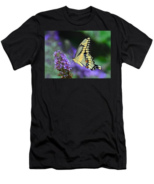 Giant Swallowtail Men's T-Shirt (Athletic Fit)