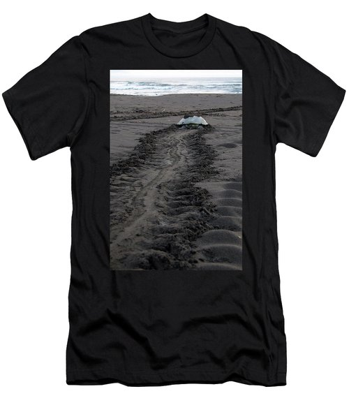 Green Sea Turtle Returning To Sea Men's T-Shirt (Athletic Fit)