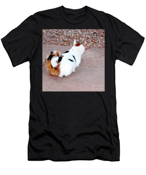 Silly Calico Kitty Men's T-Shirt (Athletic Fit)