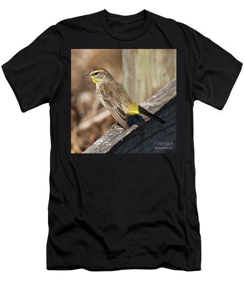 Warbler Men's T-Shirt (Athletic Fit)
