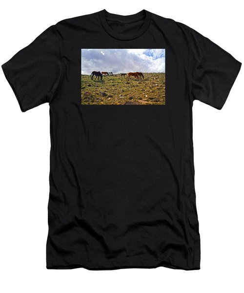 Wild Mustang Herd Men's T-Shirt (Athletic Fit)
