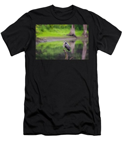 Blue Heron Men's T-Shirt (Athletic Fit)