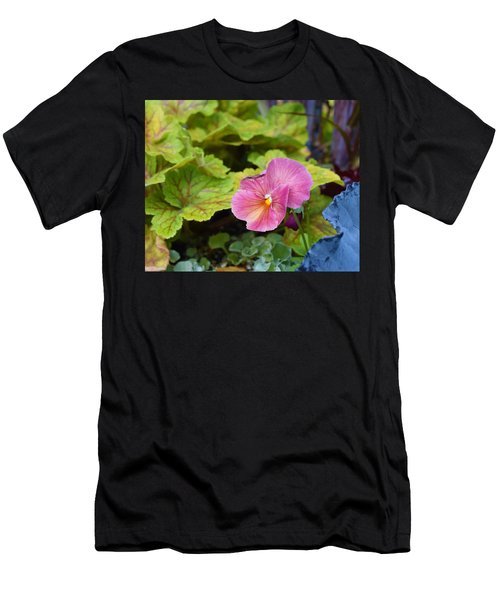 2015 After The Frost At The Garden Pansies 3 Men's T-Shirt (Athletic Fit)
