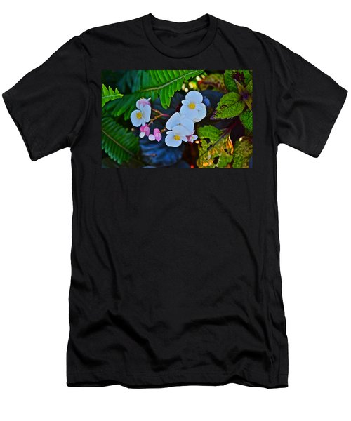 2015 Early September At The Garden Begonias Men's T-Shirt (Athletic Fit)