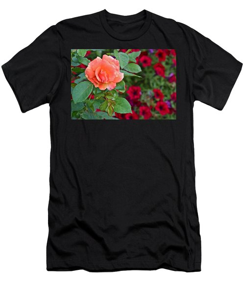 2015 Fall Equinox At The Garden Sunset Rose And Petunias Men's T-Shirt (Athletic Fit)