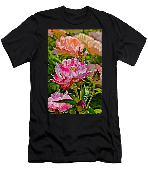 2015 Summer's Eve At The Garden Candy Stripe Peony Men's T-Shirt (Athletic Fit)