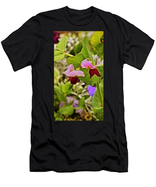 2015 Summer's Eve At The Garden Sweet Pea 2 Men's T-Shirt (Athletic Fit)