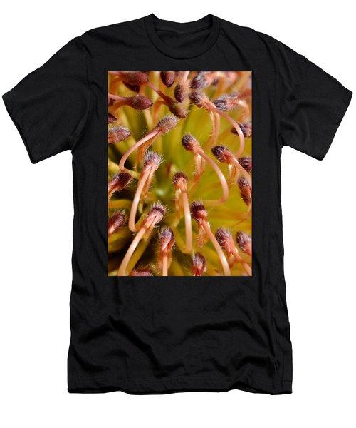 Common Pincushion Protea Men's T-Shirt (Athletic Fit)