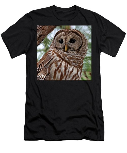 Barred Owl Men's T-Shirt (Athletic Fit)